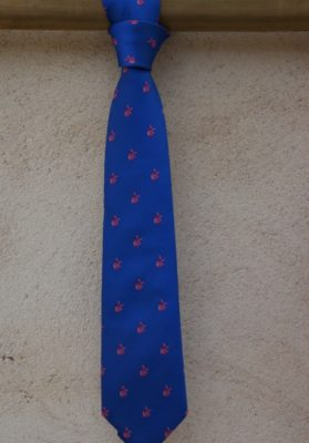 corbata-azul-molinos-rosas
